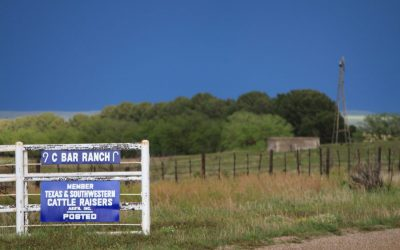 """Modern-Day"" Texas Ranch Gates"